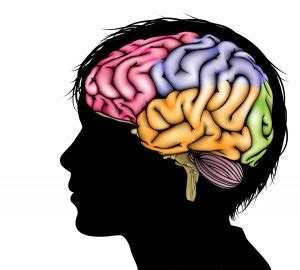 Head injuries research paper